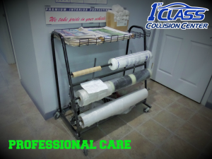 profesional care